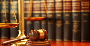 Resultado de imagen para tribunal